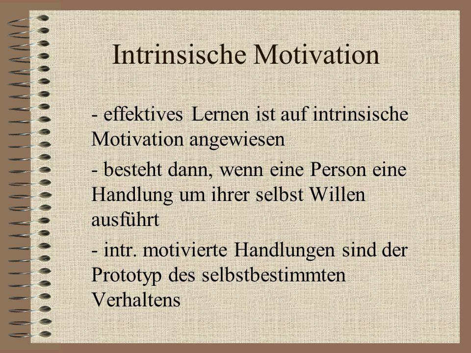 Intrinsische Motivation - effektives Lernen ist auf intrinsische Motivation angewiesen - besteht dann, wenn eine Person eine Handlung um ihrer selbst