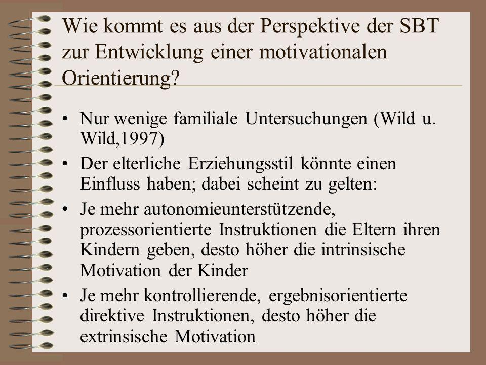 Wie kommt es aus der Perspektive der SBT zur Entwicklung einer motivationalen Orientierung? Nur wenige familiale Untersuchungen (Wild u. Wild,1997) De