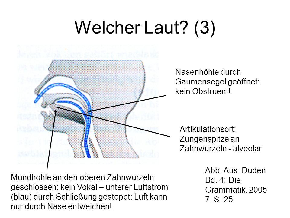Welcher Laut? (3) Nasenhöhle durch Gaumensegel geöffnet: kein Obstruent! Mundhöhle an den oberen Zahnwurzeln geschlossen: kein Vokal – unterer Luftstr