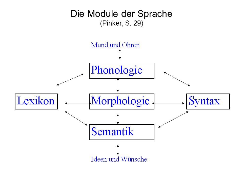 Morphologie Phonologie Gegenstand sind bedeutungstragende Einheiten (Wörter, Morpheme) Morpheme können aus einem oder vielen Phonemen bestehen (Lautketten) Gegenstand sind bedeutungsunter- scheidende Einheiten (Phoneme) Phoneme sind Einheiten, die verschiedene artikulatorische Merkmale aufweisen (Merkmalsbündel)