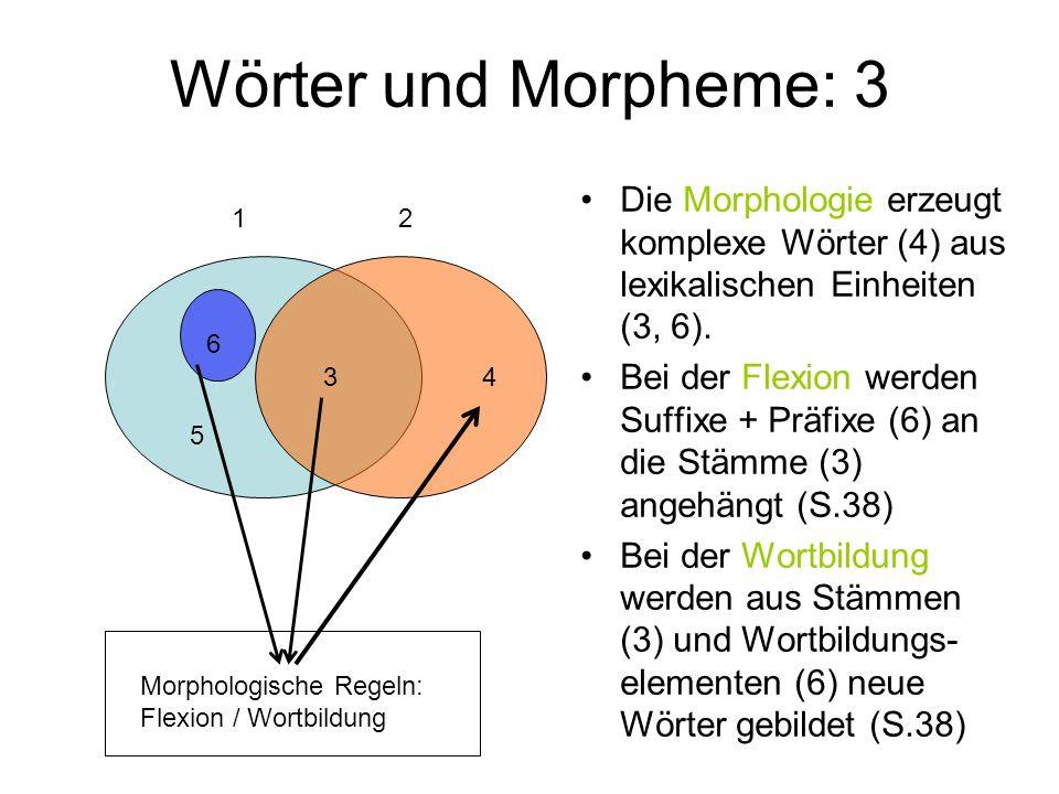 Wörter und Morpheme: 3 Die Morphologie erzeugt komplexe Wörter (4) aus lexikalischen Einheiten (3, 6). Bei der Flexion werden Suffixe + Präfixe (6) an