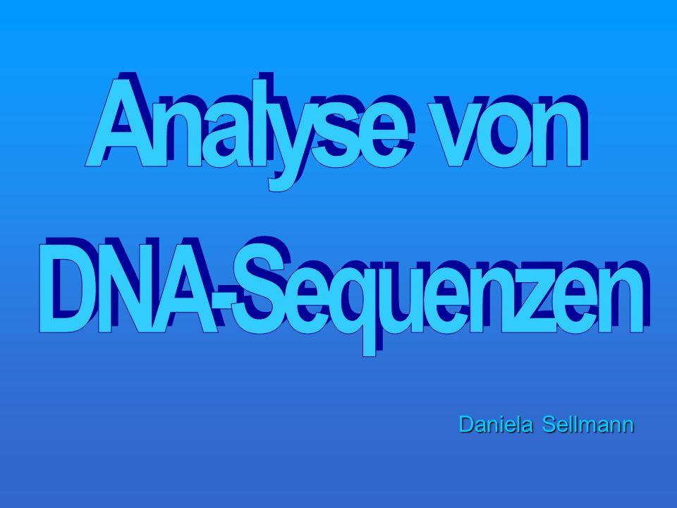 Aufklärung der Funktion eines unbekannten Gens Gen-Knockout: