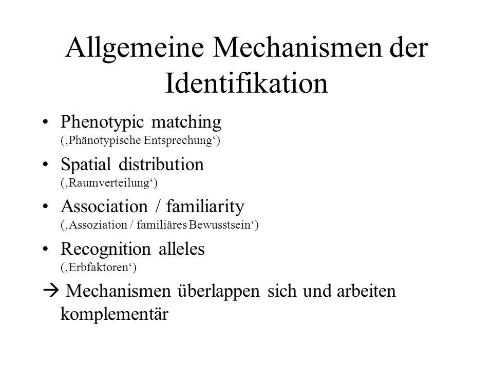 Allgemeine Mechanismen der Identifikation Phenotypic matching (Phänotypische Entsprechung) Spatial distribution (Raumverteilung) Association / familia