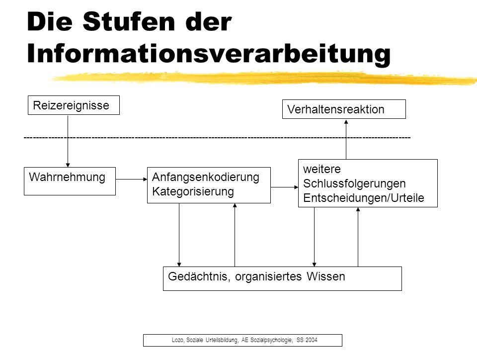 Die Stufen der Informationsverarbeitung Lozo, Soziale Urteilsbildung, AE Sozialpsychologie, SS 2004 Reizereignisse Wahrnehmung weitere Schlussfolgerun