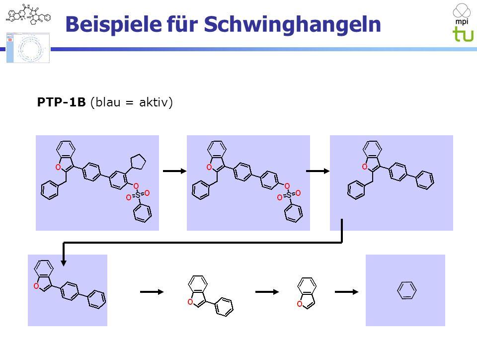 Beispiele für Schwinghangeln PTP-1B (blau = aktiv)