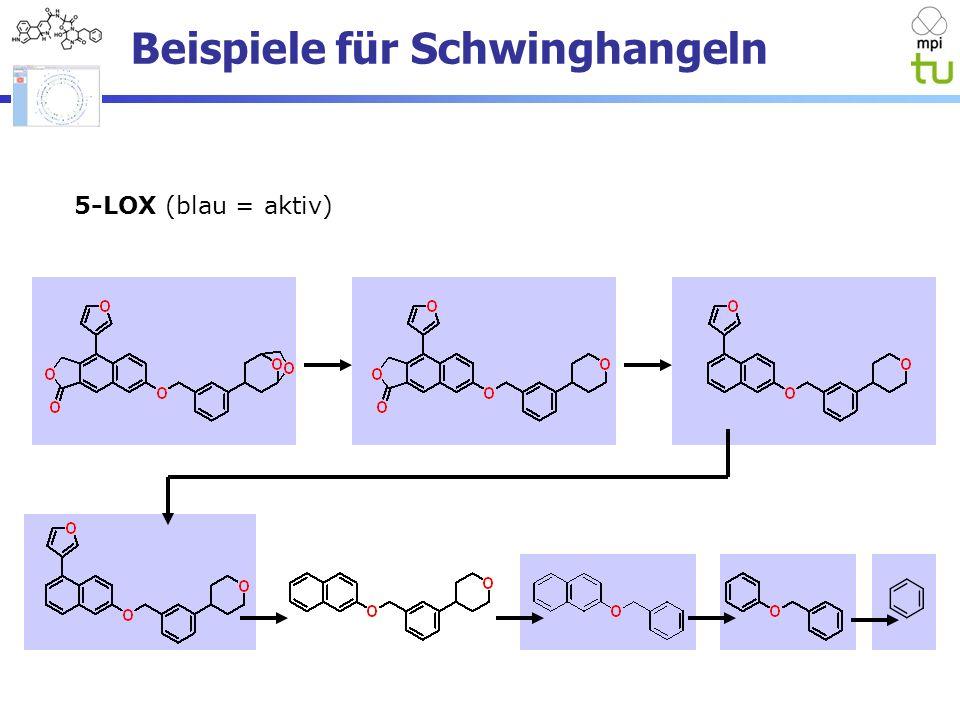 Beispiele für Schwinghangeln 5-LOX (blau = aktiv)