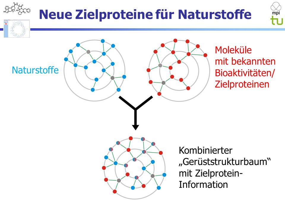 Neue Zielproteine für Naturstoffe Naturstoffe Moleküle mit bekannten Bioaktivitäten/ Zielproteinen Kombinierter Gerüststrukturbaum mit Zielprotein- Information