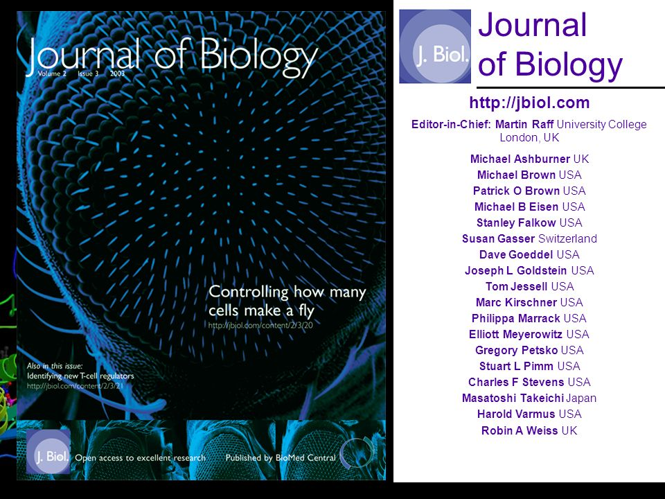 BioMed Central http://jbiol.com Editor-in-Chief: Martin Raff University College London, UK Michael Ashburner UK Michael Brown USA Patrick O Brown USA Michael B Eisen USA Stanley Falkow USA Susan Gasser Switzerland Dave Goeddel USA Joseph L Goldstein USA Tom Jessell USA Marc Kirschner USA Philippa Marrack USA Elliott Meyerowitz USA Gregory Petsko USA Stuart L Pimm USA Charles F Stevens USA Masatoshi Takeichi Japan Harold Varmus USA Robin A Weiss UK Journal of Biology