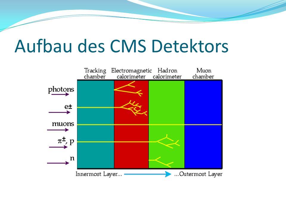 Aufbau des CMS Detektors