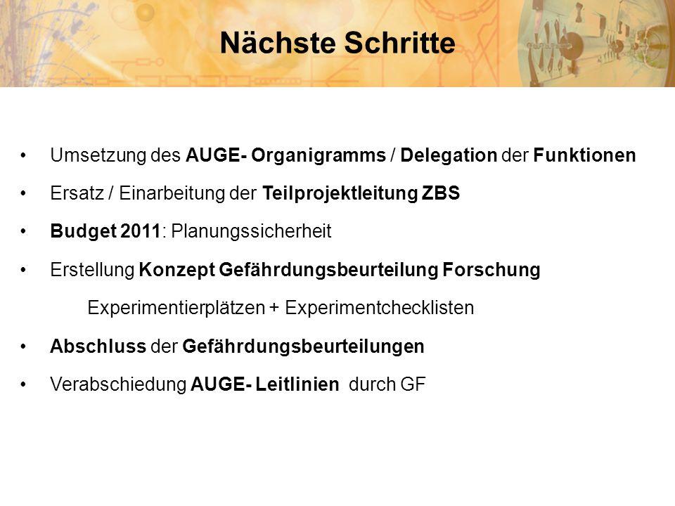 Nächste Schritte Umsetzung des AUGE- Organigramms / Delegation der Funktionen Ersatz / Einarbeitung der Teilprojektleitung ZBS Budget 2011: Planungssi