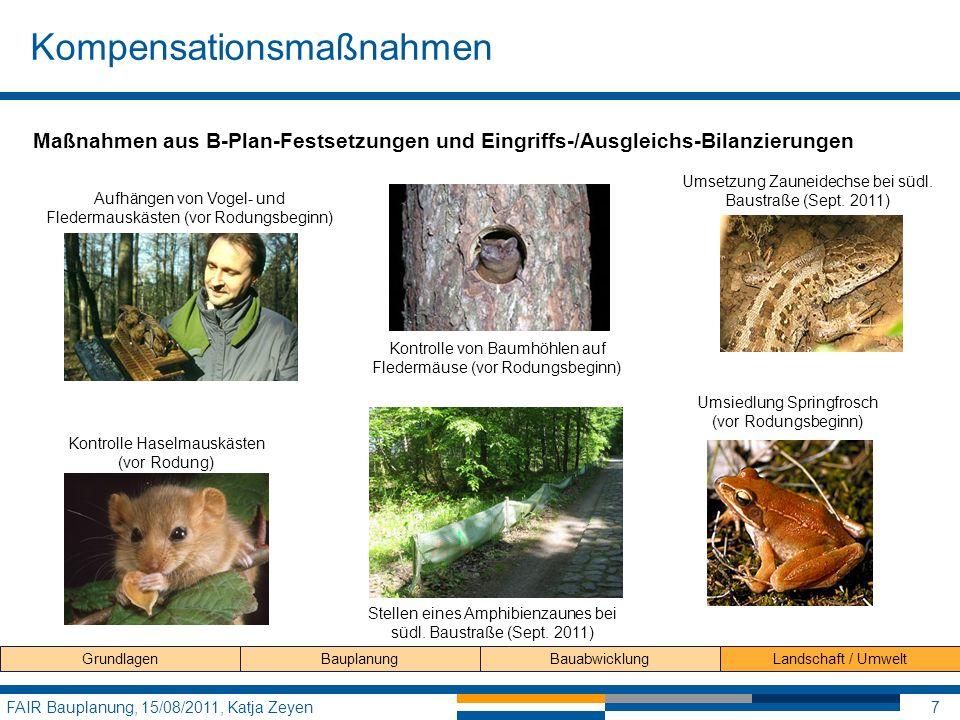 Kompensationsmaßnahmen FAIR Bauplanung, 15/08/2011, Katja Zeyen7 GrundlagenBauplanungBauabwicklungLandschaft / Umwelt Maßnahmen aus B-Plan-Festsetzung