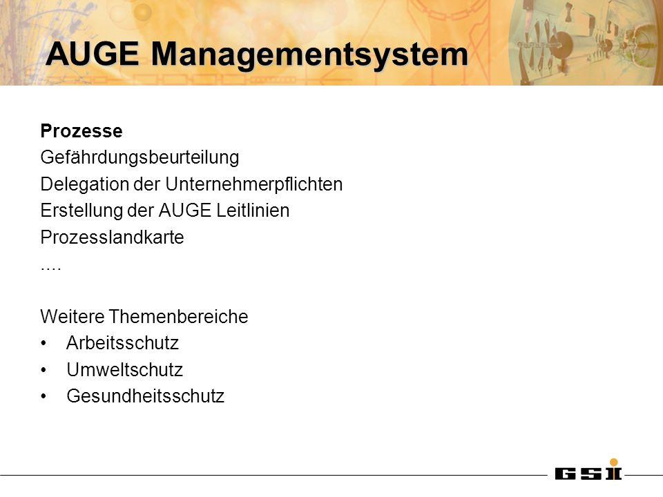 AUGE Managementsystem Prozesse Gefährdungsbeurteilung Delegation der Unternehmerpflichten Erstellung der AUGE Leitlinien Prozesslandkarte.... Weitere