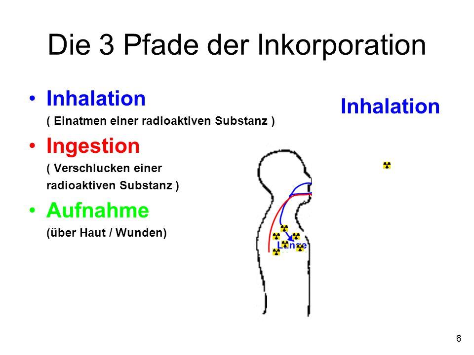 6 Die 3 Pfade der Inkorporation Inhalation ( Einatmen einer radioaktiven Substanz ) Ingestion ( Verschlucken einer radioaktiven Substanz ) Aufnahme (ü