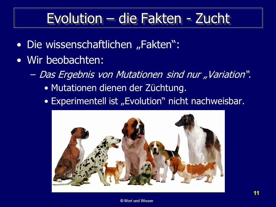 11 Evolution – die Fakten - Zucht Die wissenschaftlichen Fakten: Wir beobachten: –Das Ergebnis von Mutationen sind nur Variation. Mutationen dienen de
