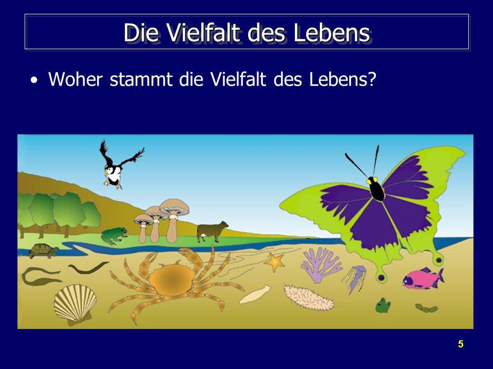 5 Die Vielfalt des Lebens Woher stammt die Vielfalt des Lebens?