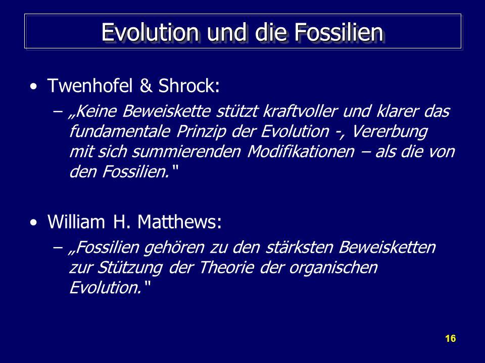 16 Evolution und die Fossilien Twenhofel & Shrock: –Keine Beweiskette stützt kraftvoller und klarer das fundamentale Prinzip der Evolution -, Vererbun