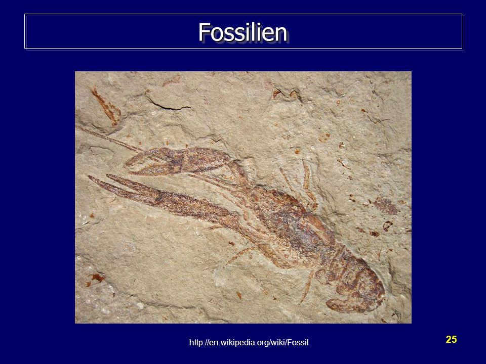 25 FossilienFossilien http://en.wikipedia.org/wiki/Fossil