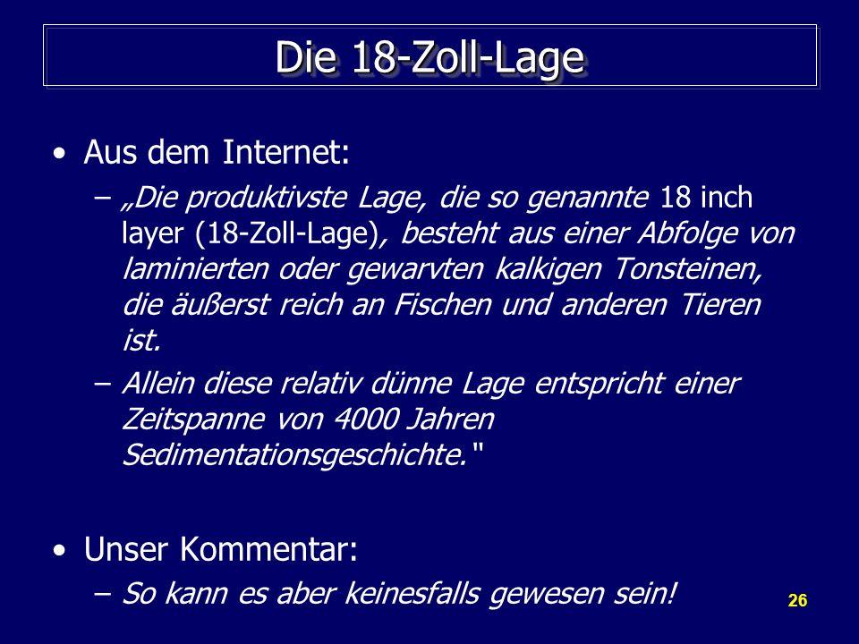 26 Die 18-Zoll-Lage Aus dem Internet: –Die produktivste Lage, die so genannte 18 inch layer (18-Zoll-Lage), besteht aus einer Abfolge von laminierten