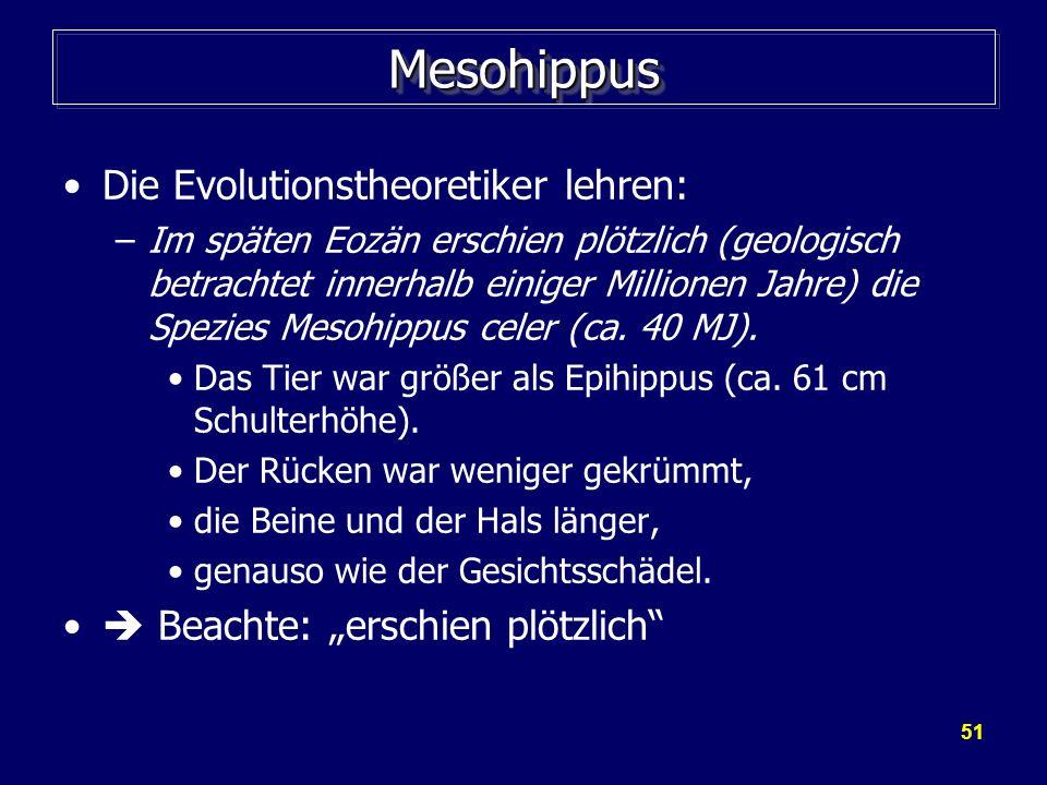51 MesohippusMesohippus Die Evolutionstheoretiker lehren: –Im späten Eozän erschien plötzlich (geologisch betrachtet innerhalb einiger Millionen Jahre