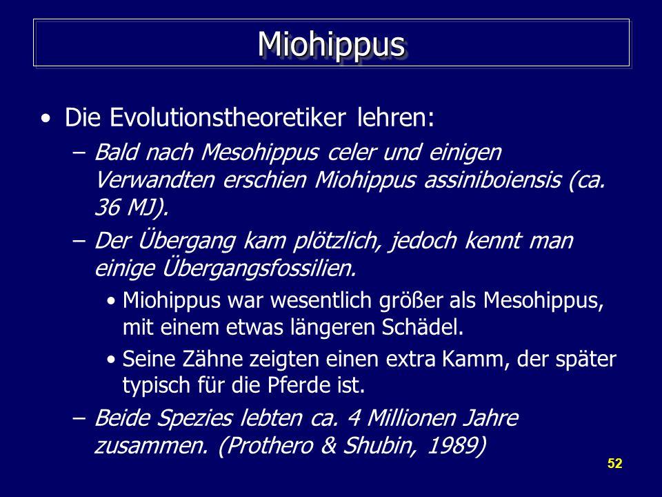 52 MiohippusMiohippus Die Evolutionstheoretiker lehren: –Bald nach Mesohippus celer und einigen Verwandten erschien Miohippus assiniboiensis (ca. 36 M