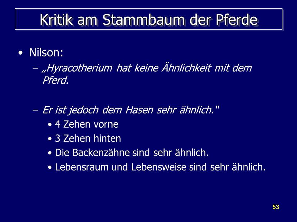 53 Kritik am Stammbaum der Pferde Nilson: –Hyracotherium hat keine Ähnlichkeit mit dem Pferd. –Er ist jedoch dem Hasen sehr ähnlich. 4 Zehen vorne 3 Z