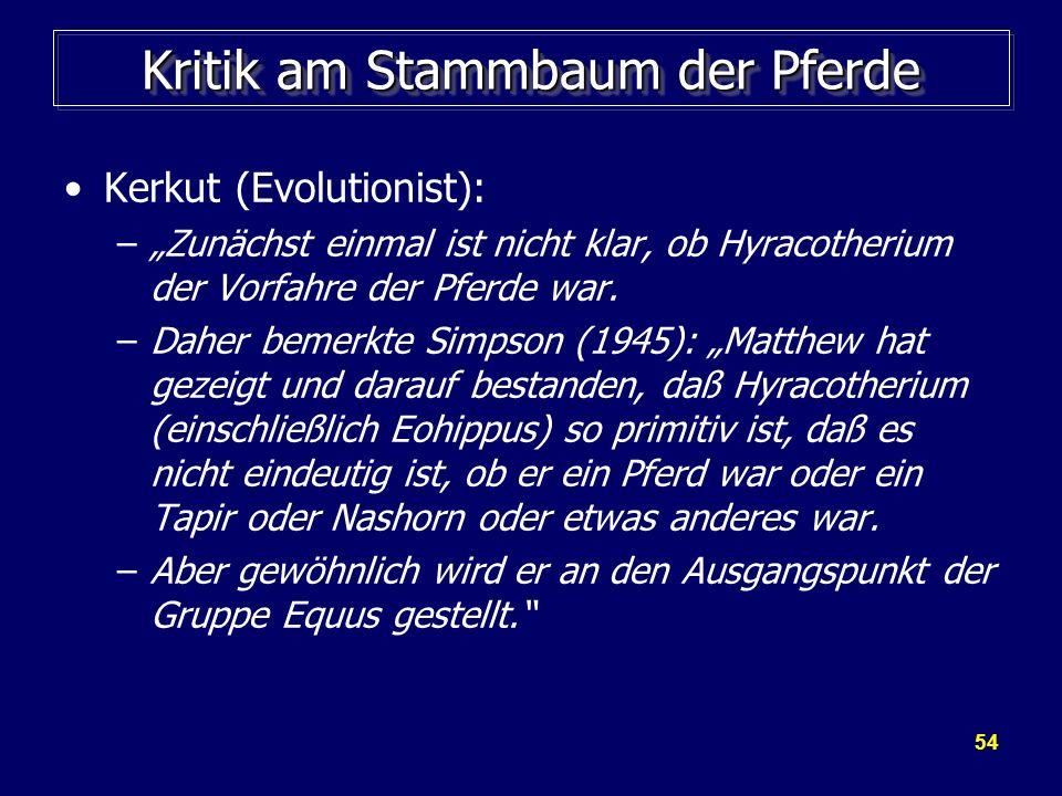 54 Kritik am Stammbaum der Pferde Kerkut (Evolutionist): –Zunächst einmal ist nicht klar, ob Hyracotherium der Vorfahre der Pferde war. –Daher bemerkt