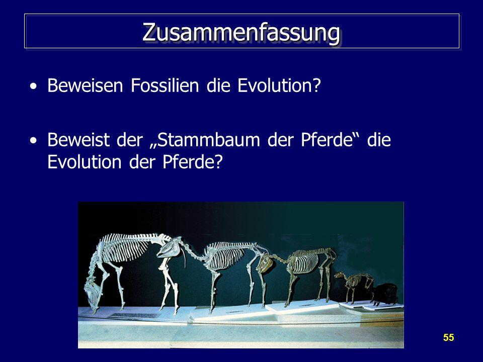 55 ZusammenfassungZusammenfassung Beweisen Fossilien die Evolution? Beweist der Stammbaum der Pferde die Evolution der Pferde?