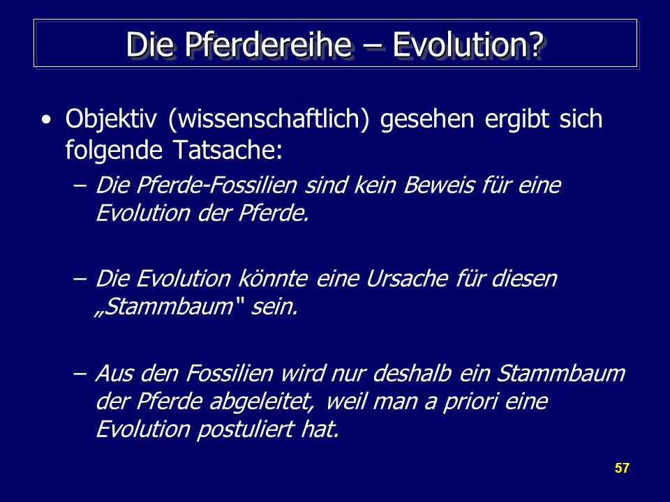57 Die Pferdereihe – Evolution? Objektiv (wissenschaftlich) gesehen ergibt sich folgende Tatsache: –Die Pferde-Fossilien sind kein Beweis für eine Evo