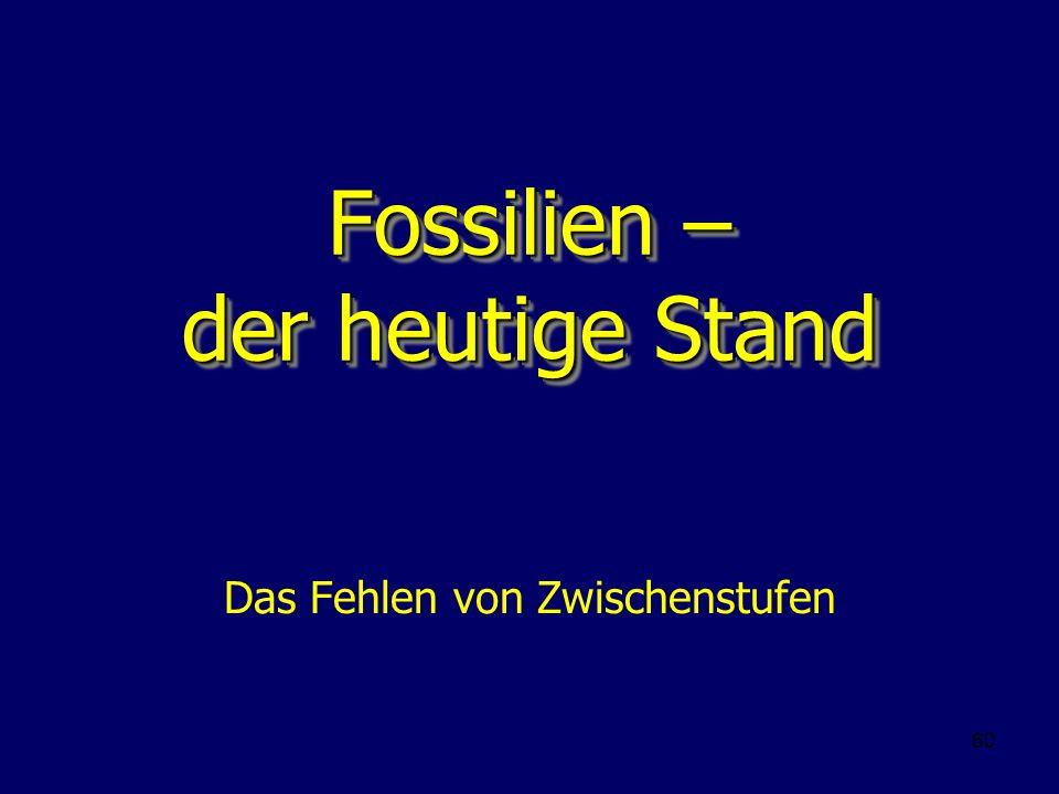 60 Fossilien – der heutige Stand Das Fehlen von Zwischenstufen