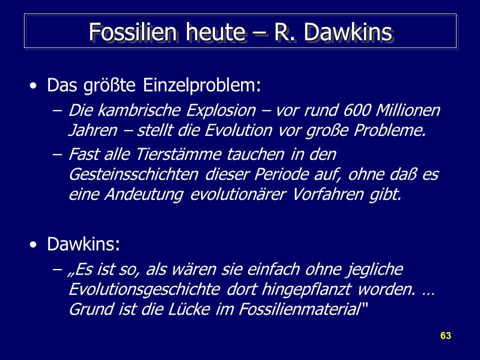 63 Fossilien heute – R. Dawkins Das größte Einzelproblem: –Die kambrische Explosion – vor rund 600 Millionen Jahren – stellt die Evolution vor große P