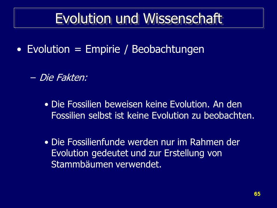 65 Evolution und Wissenschaft Evolution = Empirie / Beobachtungen –Die Fakten: Die Fossilien beweisen keine Evolution. An den Fossilien selbst ist kei