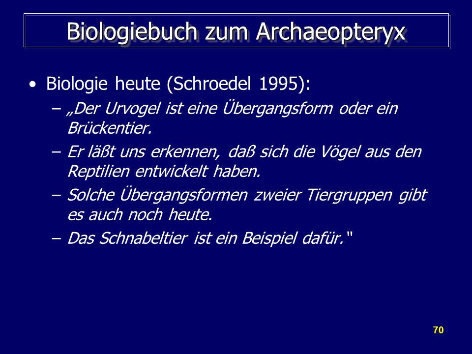 70 Biologiebuch zum Archaeopteryx Biologie heute (Schroedel 1995): –Der Urvogel ist eine Übergangsform oder ein Brückentier. –Er läßt uns erkennen, da