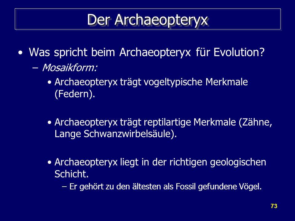 73 Der Archaeopteryx Was spricht beim Archaeopteryx für Evolution? –Mosaikform: Archaeopteryx trägt vogeltypische Merkmale (Federn). Archaeopteryx trä