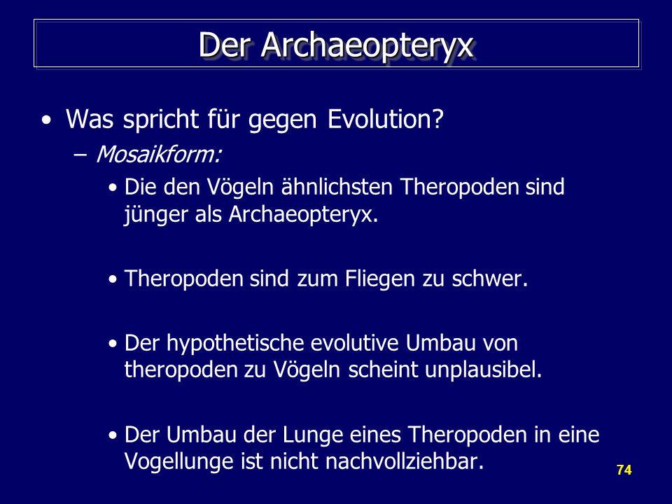 74 Der Archaeopteryx Was spricht für gegen Evolution? –Mosaikform: Die den Vögeln ähnlichsten Theropoden sind jünger als Archaeopteryx. Theropoden sin