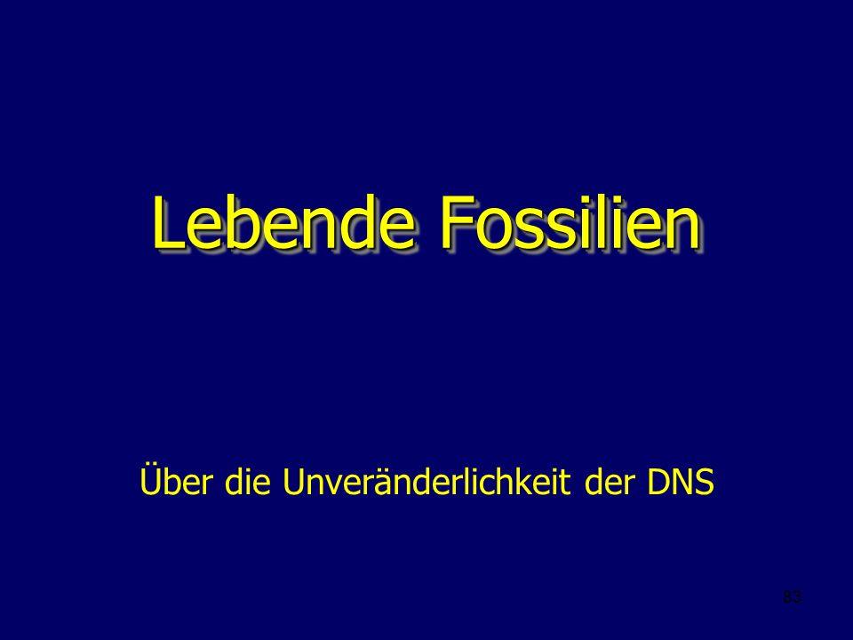 83 Lebende Fossilien Über die Unveränderlichkeit der DNS