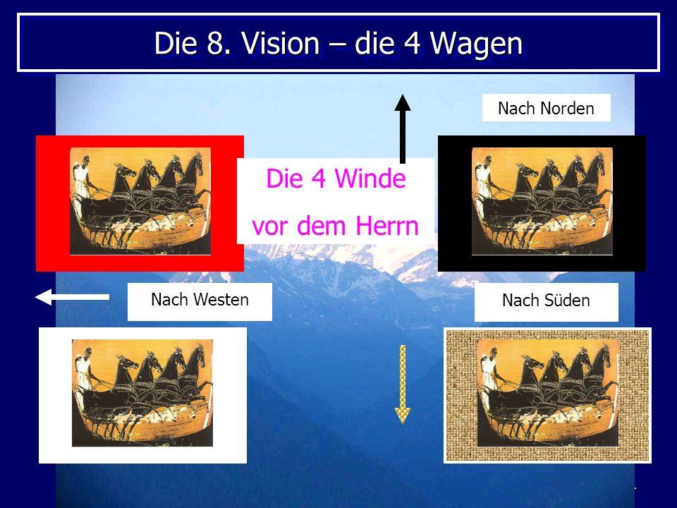 4 Die 8. Vision – die 4 Wagen Die 4 Winde vor dem Herrn Nach Norden Nach Westen Nach Süden