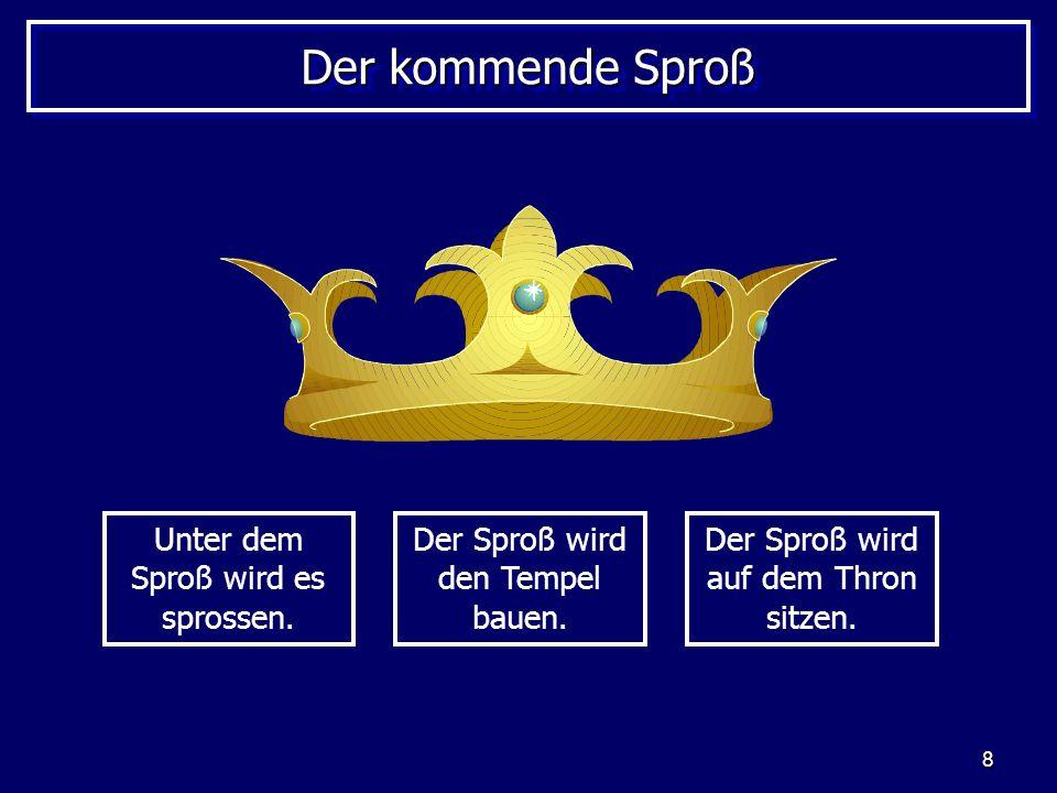 8 Der kommende Sproß Unter dem Sproß wird es sprossen. Der Sproß wird den Tempel bauen. Der Sproß wird auf dem Thron sitzen.