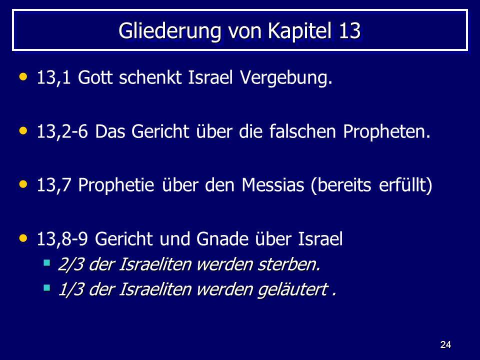 24 Gliederung von Kapitel 13 13,1 Gott schenkt Israel Vergebung. 13,2-6 Das Gericht über die falschen Propheten. 13,7 Prophetie über den Messias (bere
