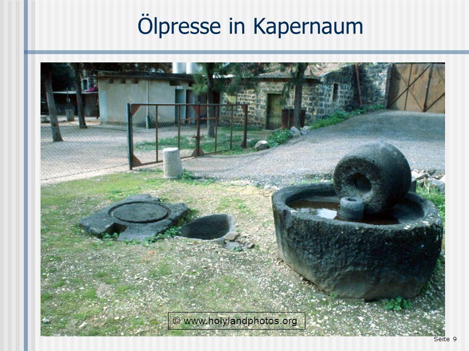 Seite 9 Ölpresse in Kapernaum © www.holylandphotos.org
