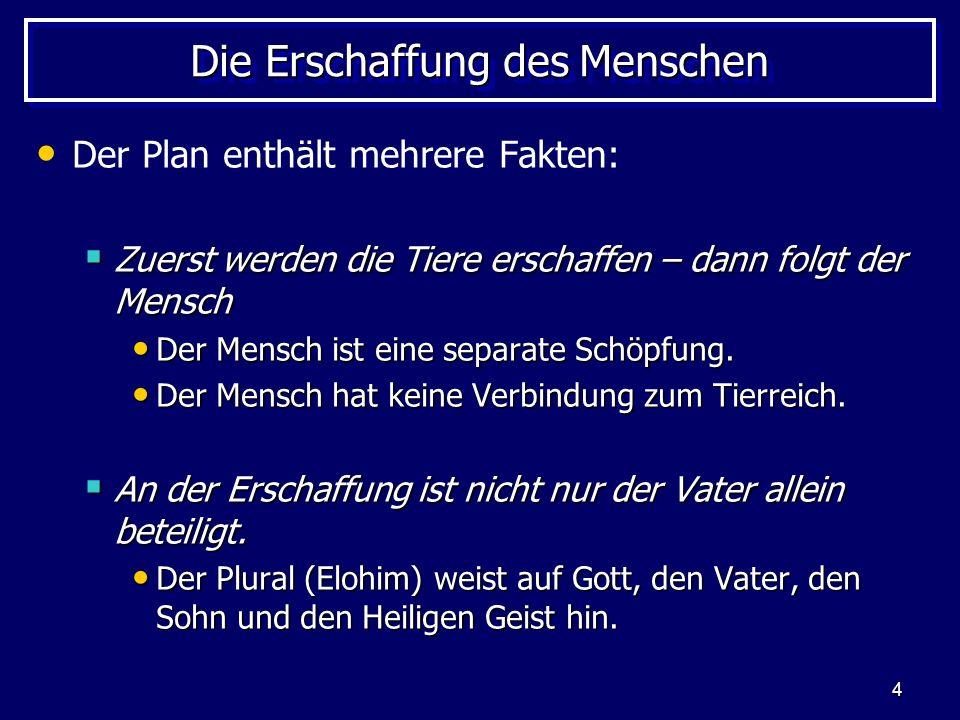 4 Die Erschaffung des Menschen Der Plan enthält mehrere Fakten: Zuerst werden die Tiere erschaffen – dann folgt der Mensch Zuerst werden die Tiere ers