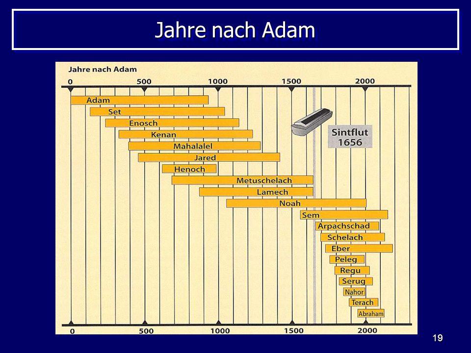 19 Jahre nach Adam