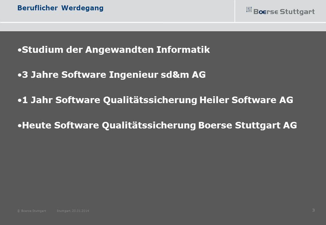 Beruflicher Werdegang Studium der Angewandten Informatik 3 Jahre Software Ingenieur sd&m AG 1 Jahr Software Qualitätssicherung Heiler Software AG Heut