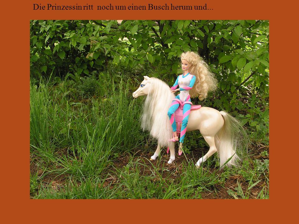 Die Prinzessin ritt noch um einen Busch herum und...