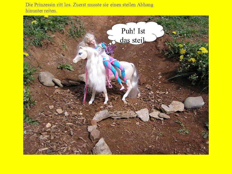 Die Prinzessin ritt los. Zuerst musste sie einen steilen Abhang hinunter reiten. Puh! Ist das steil.
