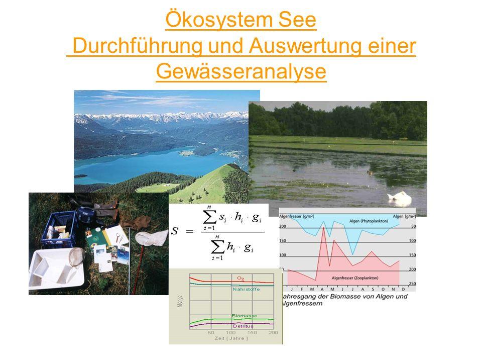 Ökosystem See Durchführung und Auswertung einer Gewässeranalyse
