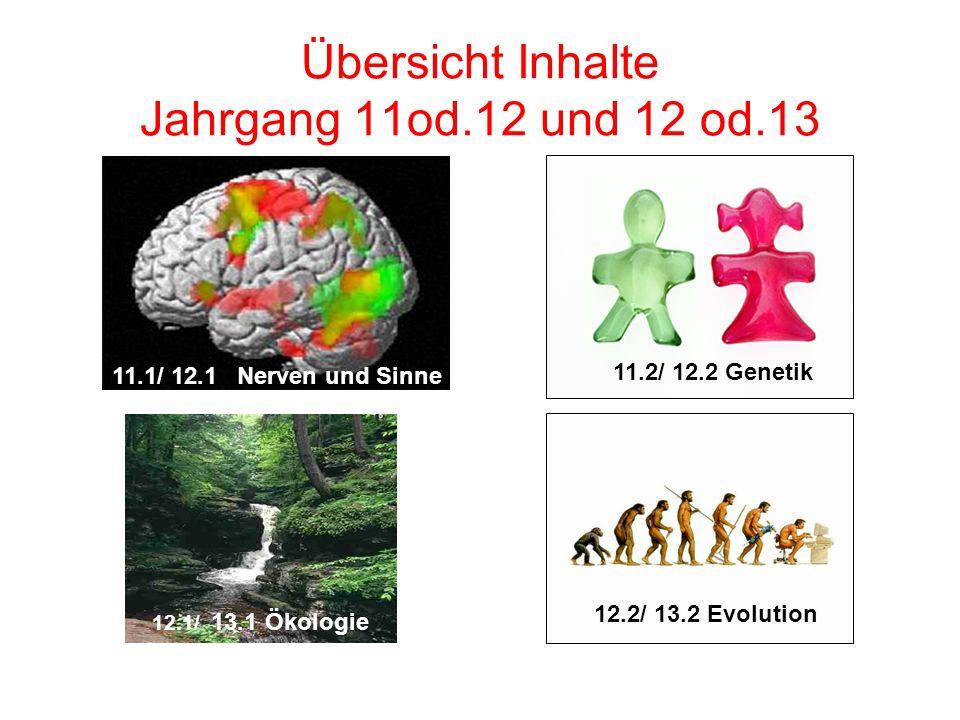 Übersicht Inhalte Jahrgang 11od.12 und 12 od.13 11.1/ 12.1 Nerven und Sinne 11.2/ 12.2 Genetik 12.1/ 13.1 Ökologie 12.2/ 13.2 Evolution