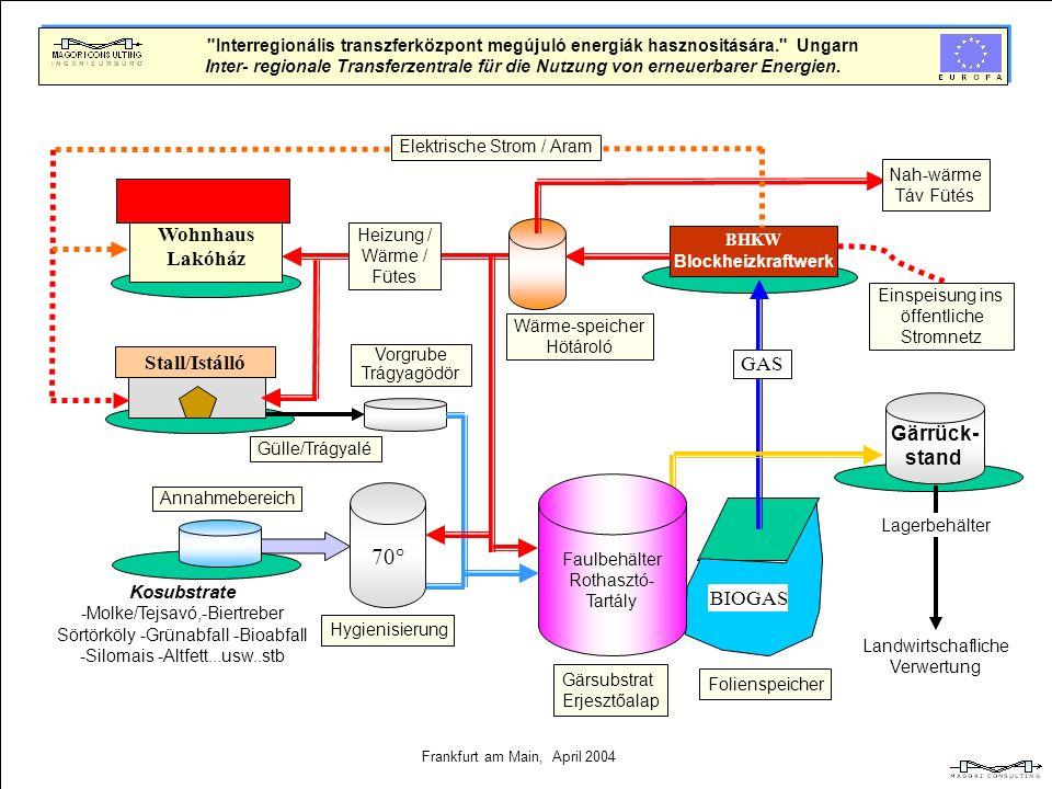 Biomasse- Biogas Wie entsteht Biogas? Abbau organischer Substanzen durch Bakterien in einer Biogasanlage. Die Eingangsstoffe werden von fermentativen