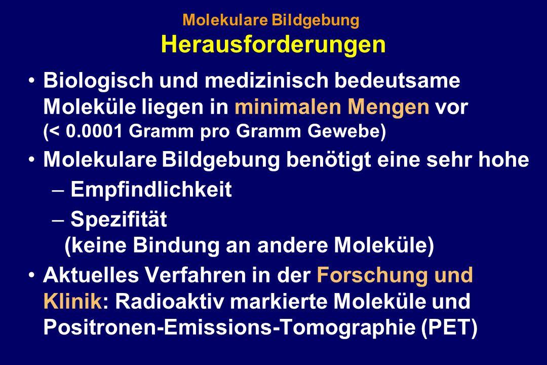 Herausforderungen Biologisch und medizinisch bedeutsame Moleküle liegen in minimalen Mengen vor (< 0.0001 Gramm pro Gramm Gewebe) Molekulare Bildgebun