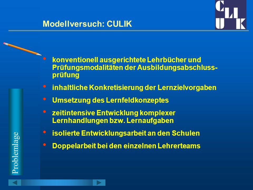 Modellversuch: CULIK Verbundprojekt mit Hamburg Entwicklung und Erprobung eines Modells zur Vernetzung von Entwicklungsarbeiten und Qualifizierungsprozessen an Schulen mit der Ausbildung in Studienseminaren Umsetzung der KMK-Lernfelder in konkrete Lern- situationen (z.
