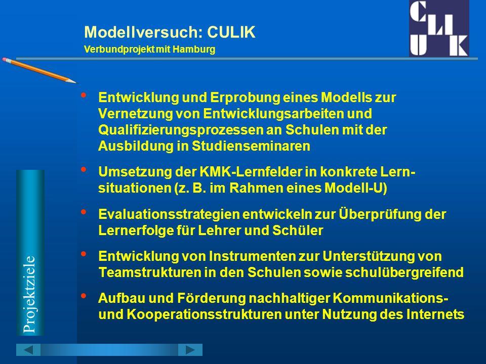 T e i l n e h m e r Modellversuch: CULIK Verbundprojekt mit Hamburg 4 berufsbildende Schulen in Niedersachsen (Göttingen, Hannover, Oldenburg, Stade) 3 nds.